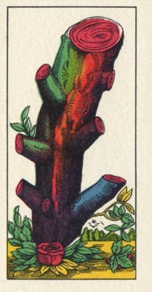 Corso di Cartomanzia: le carte napoletane o le piacentine, il seme di bastoni