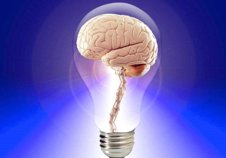 Intelligenti si nasce o si diventa?